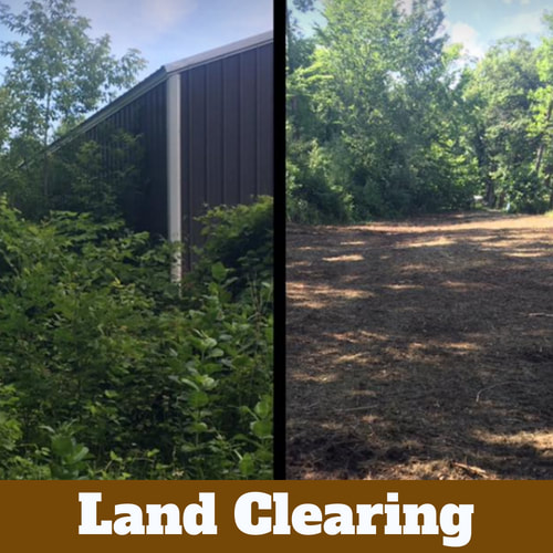 Before and after of a cleared out area of land